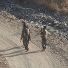Şırnak'taki terör örgütüne yönelik operasyonlar