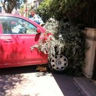 Aracıyla Balıkesir Büyükşehir Belediye Başkanı'nın evine çarptı