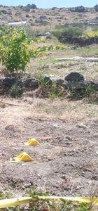 Konya'da arazi kavgası