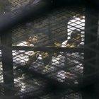 Mısır'da 13 darbe karşıtına idam cezası verildi