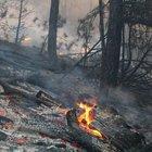 Balıkesir'de korkutan yangın! 4 hektar alan kül oldu