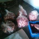 Aydın'da kaçak domuz eti operasyonu