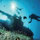 Vanatu açıklarındaki dünyanın en geniş batığı büyülüyor
