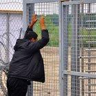 Macaristan'da sığınmacı krizi