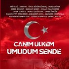 'Canım Ülkem Umudum Sende' albümü piyasaya çıktı