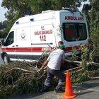 Adana'da şiddet gören kadını taşıyan ambulansın üzerine ağaç devrildi