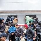 Almanya'dan mültecilere 300 bin kotası