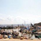 İstanbul'da balık avı sezonu açılıyor