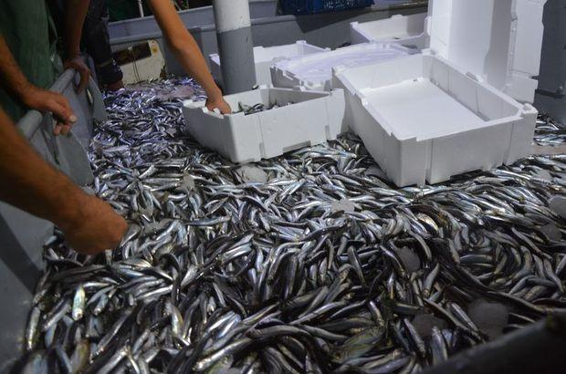 balık av