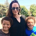 Dev oyuncak ayı Angelina Jolie'nin oldu