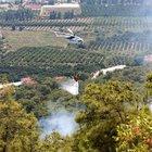 Kemer'de alevlere hızlı müdahale ormanı kurtardı