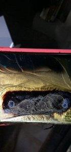 Bu kez iPhone 7 araba yaktı!
