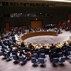 Rusya, olağanüstü BM Güvenlik Konseyi toplantısı istiyor