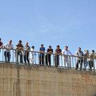Bursa'da misinaya takılan baykuş için jandarma köprüyü kapattı