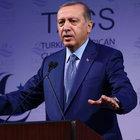 Syria cease-fire 'stillborn baby': Erdogan