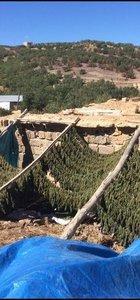 PKK'ya uyuşturucu darbesi!