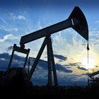 Ham petrol ithalatı temmuz ayında geriledi