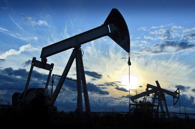 Temmuz ayında ham petrol ithalatı düştü