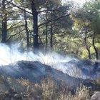 Maytap ile oynayan çocuklar orman yangını çıkardı