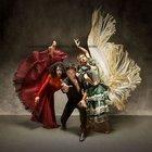 TİM'de flamenko rüzgârı esecek
