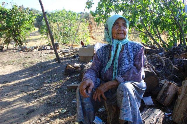 Aydın Efeler'de yaşayan yaşlı kadının dağda çile dolu hayatı