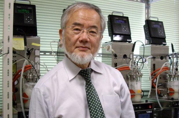 Japon Profesör Yoshinori Ohsumi