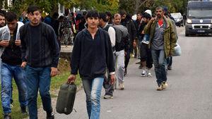 Uluslararası göç örgütü sığınmacı raporunu açıkladı