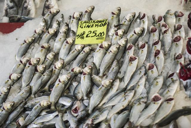 """""""Türkiye'nin balık stoğu tükeniyor"""""""