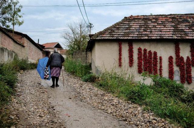 Biberlerin başkenti Donja Lakosnica