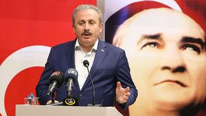 Mustafa Şentop: Yakında erken seçim olacağı kanaatinde değilim