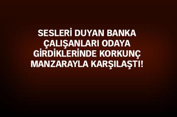 Kalkınma Bankası