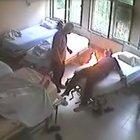 Hastanede bağlı olduğu yatağını ateşe verdi