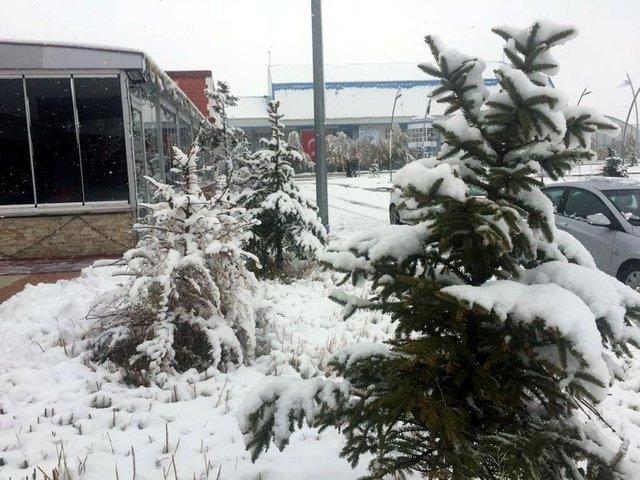 Doğu'da kar yağışı
