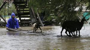 Filipinler'de Haima tayfunu: 5 ölü