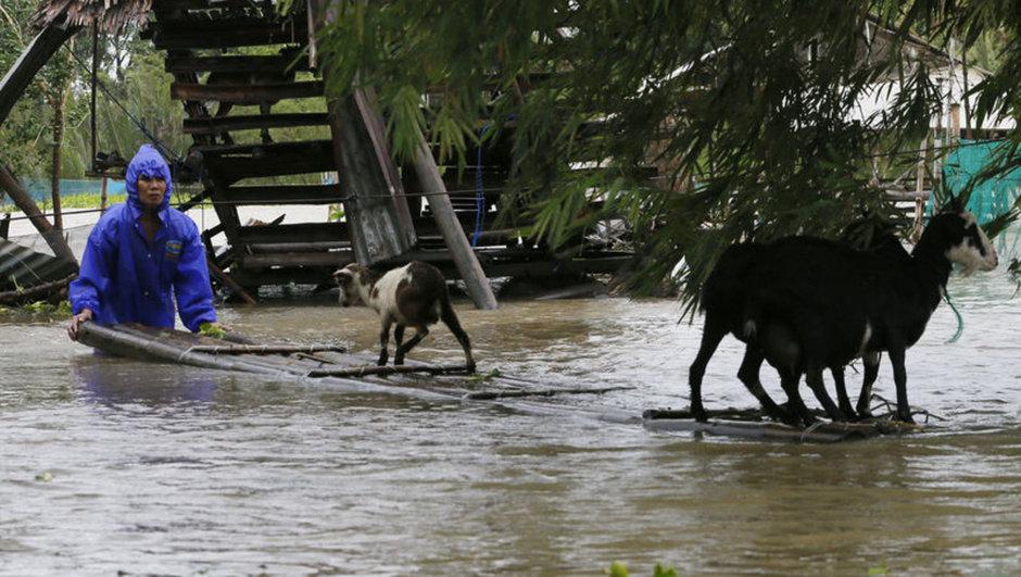 Filipinler Haima tayfunu