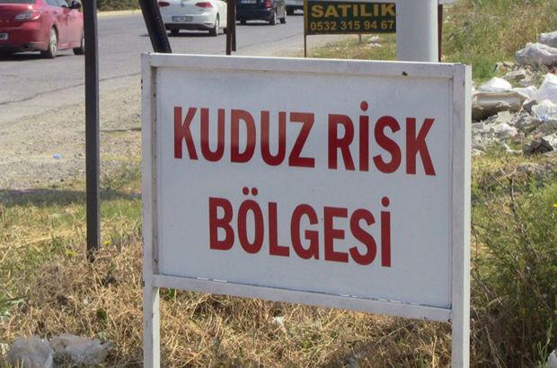 Afyonkarahisar Kuduz