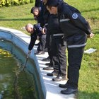 Göle atılan onlarca 1 dolar polisi alarma geçirdi