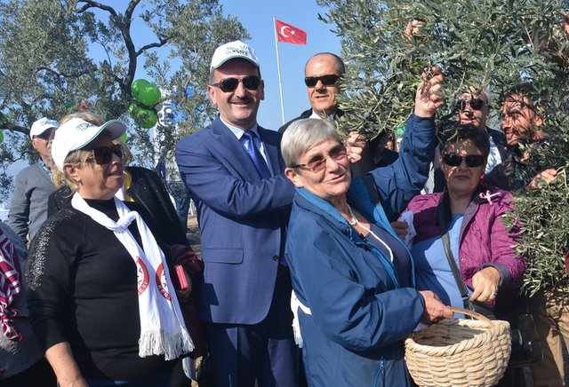 "Prof. Dr. Canan Karatay: ""Zeytinyağı başlı başına şifadır"""