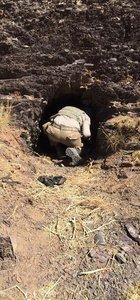 Hakkari'de bugüne kadar 463 terörist öldürüldü