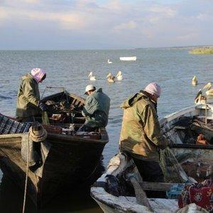 Manyas Gölü balıkçılarının gözü o ülkede!