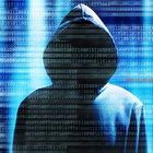ABD'de siber saldırıyı New World Hackers üstlendi