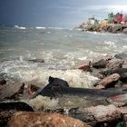 İsrail, kanalizasyon sularını Suriye'ye akıtıyor