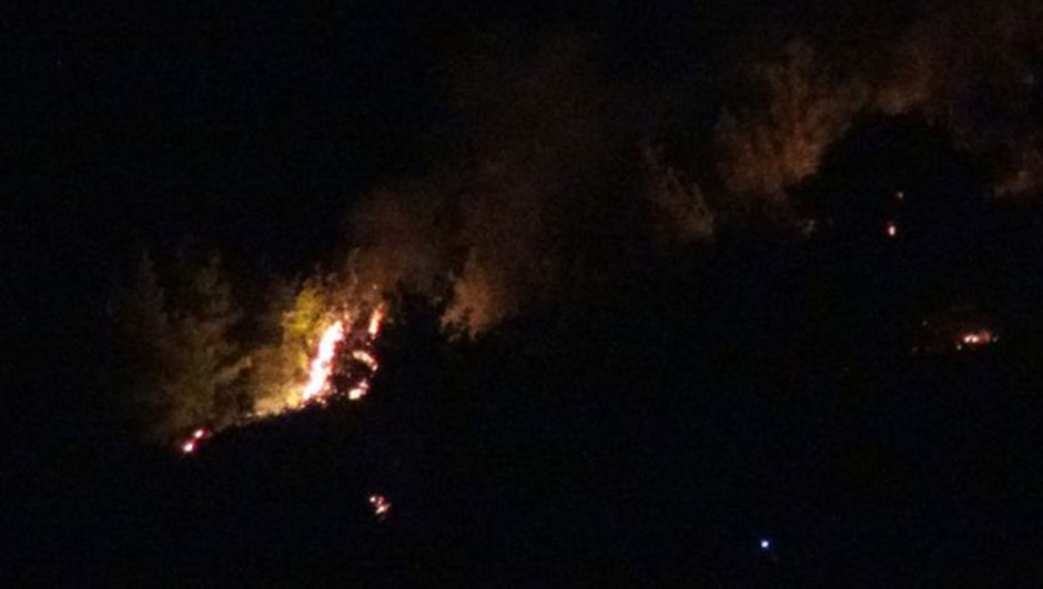 Adana Orman yangını