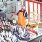 Ne zaman ne yemeli hafta hafta balık takvimi