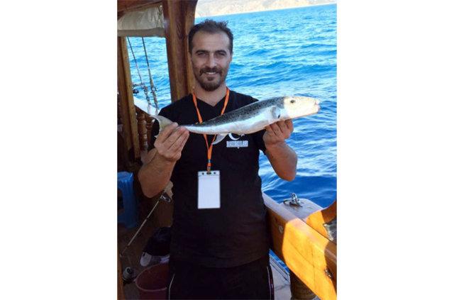 Akdeniz'de balon balığı kabusu