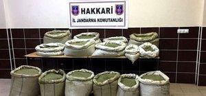 Hakkari'de uyuşturucu operasyonu