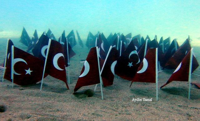 Vízalatti zászlóerdő - Forrás: HaberTürk