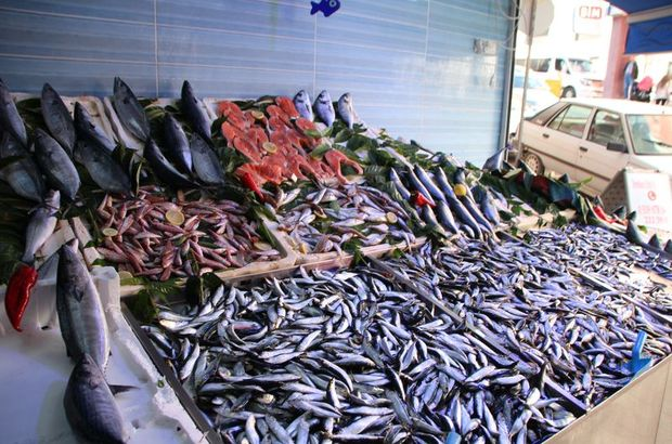 Balık fiyatları