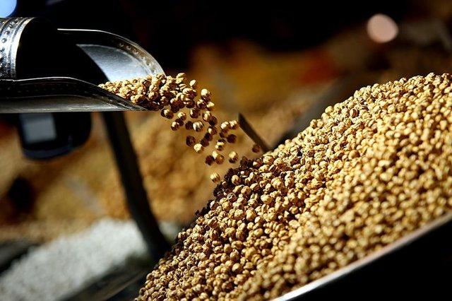 Kanserden koruyan yiyecekler nelerdir?
