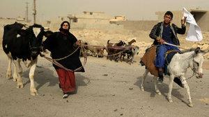 BM: DEAŞ, 25 bin sivili zorla Musul ve civarına yerleştirmek istedi
